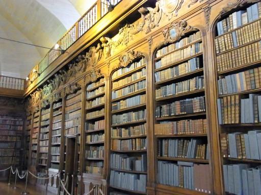 bibliotheque-alancon-2
